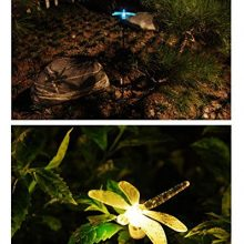 Solar Powered Outdoor Hummingbird, Butterfly & Dragonfly Solar Garden Stake Light with Chameleon Multi-color Changing LED Light